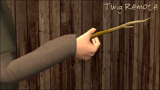 Twig Remote