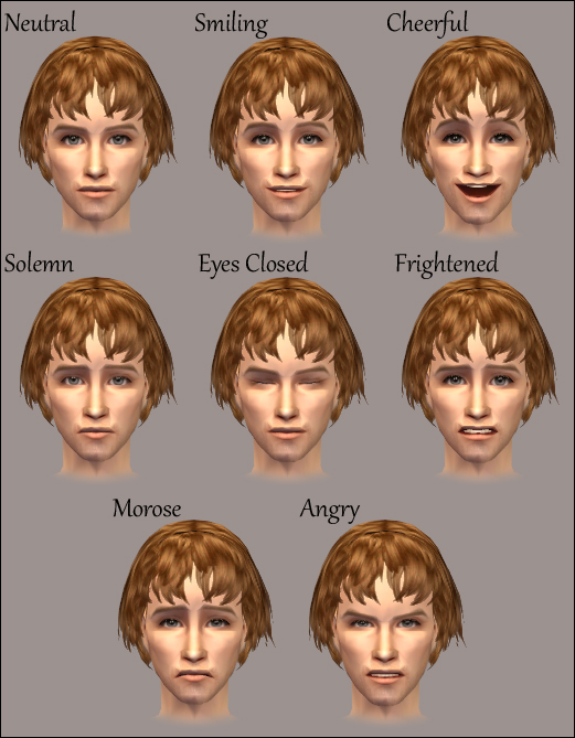 Facial Overlays